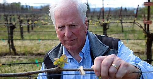 Rep. Mike Thompson, D-St. Helena, grows 20 acres of sauvignon blanc grapes at his farm north of Napa. Jim Wilson/New York Times News Service photo