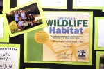 A bulletin board in Sarah Roche's class at Merryhill School details the class' efforts to create a certified wildlife habitat. Fred Gladdis/Enterprise photo