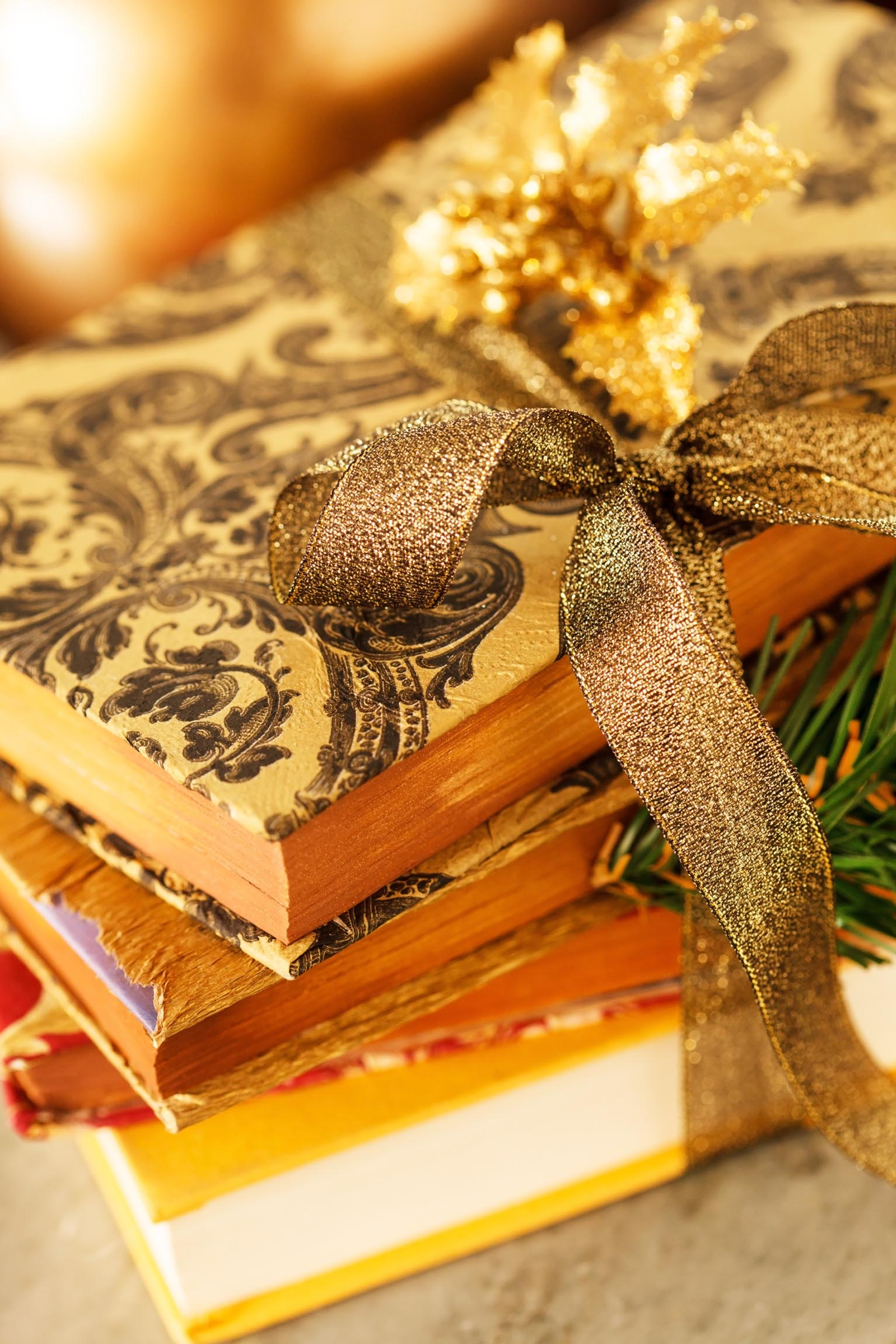 Coffee table books for holiday t giving